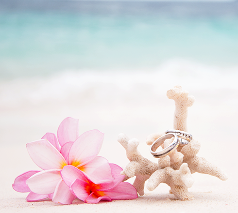 Leo Hamel Engagement Ring